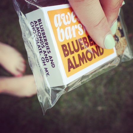 Awesome Bars Snack Bar - Blueberry Almond